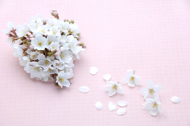 第三首 清史の短歌「白い肌〜」短歌で紡ぐ架空の恋