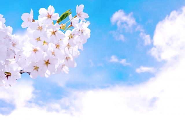 第二十一首 清史の短歌「天翔ける〜」短歌で紡ぐ架空の恋